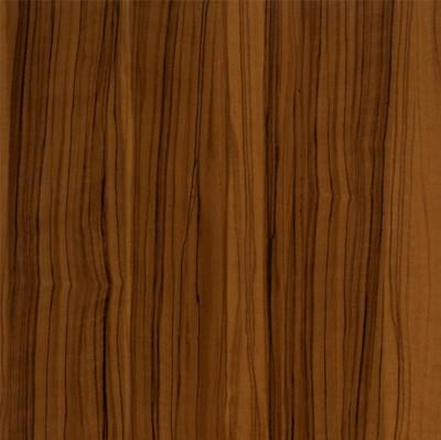 7054-橄榄木